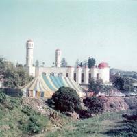 1981-side